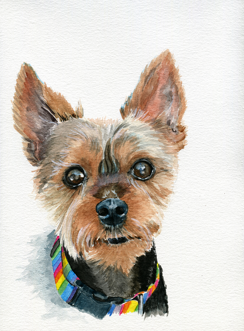 """Watercolor on Canson 140 lb watercolor paper, 8 x 10"""""""