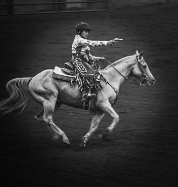 Mounted horse shoot action photography.